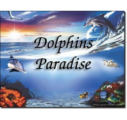Dolphins Paradise