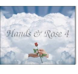 Hands Rose 4
