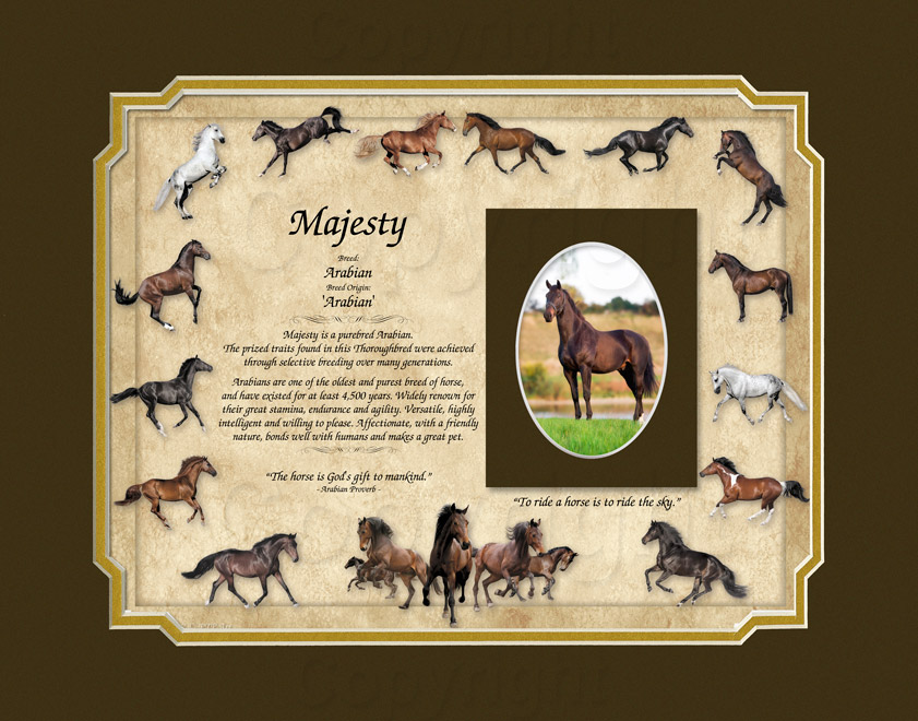 Arabian Horse Keepsake - 11x14 mat with photo mat