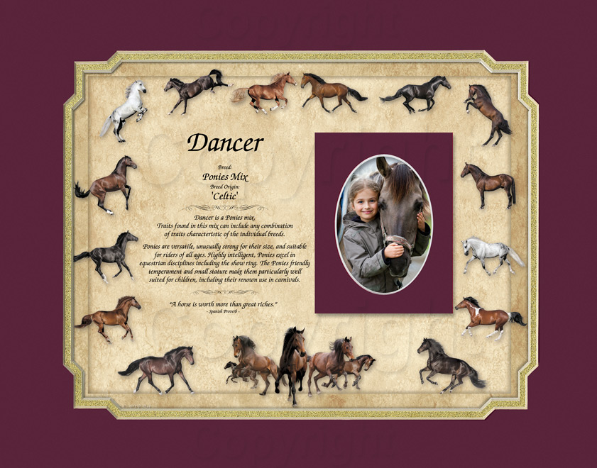 Ponies Horse Keepsake - 11x14 mat with photo mat