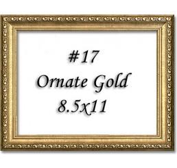 Frame #17