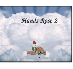 Hands Rose 2