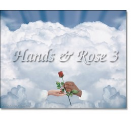 Hands Rose 3