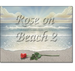 Rose on Beach 2
